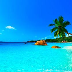 caribbean-blue-cropped.jpg